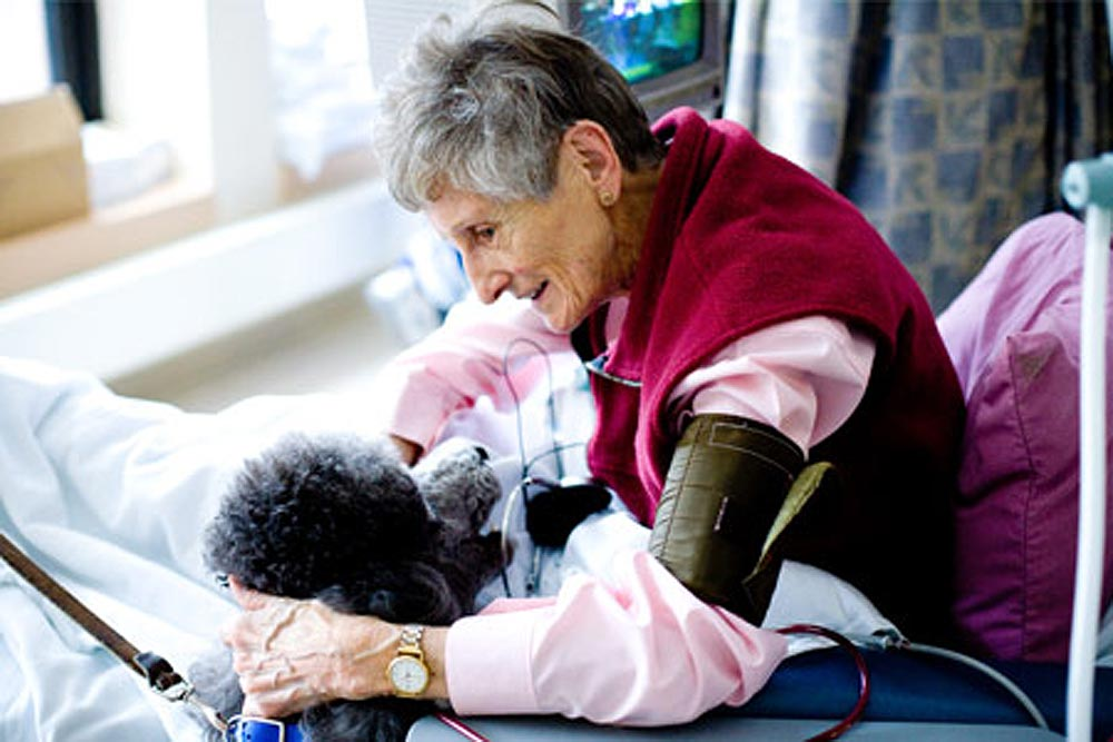A 2005 Italian study has shown that seniors who looked after a pet displayed higher levels of happiness than those who did not. Judy Suave of Therapeutic Paws of Canada says that seniors can get a lot of pleasure and joy out of pet therapy.